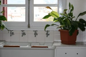 Kitchen Sink with Plant Image